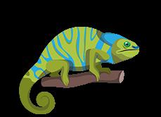 Gady-Gady – Blog Zoologiczny